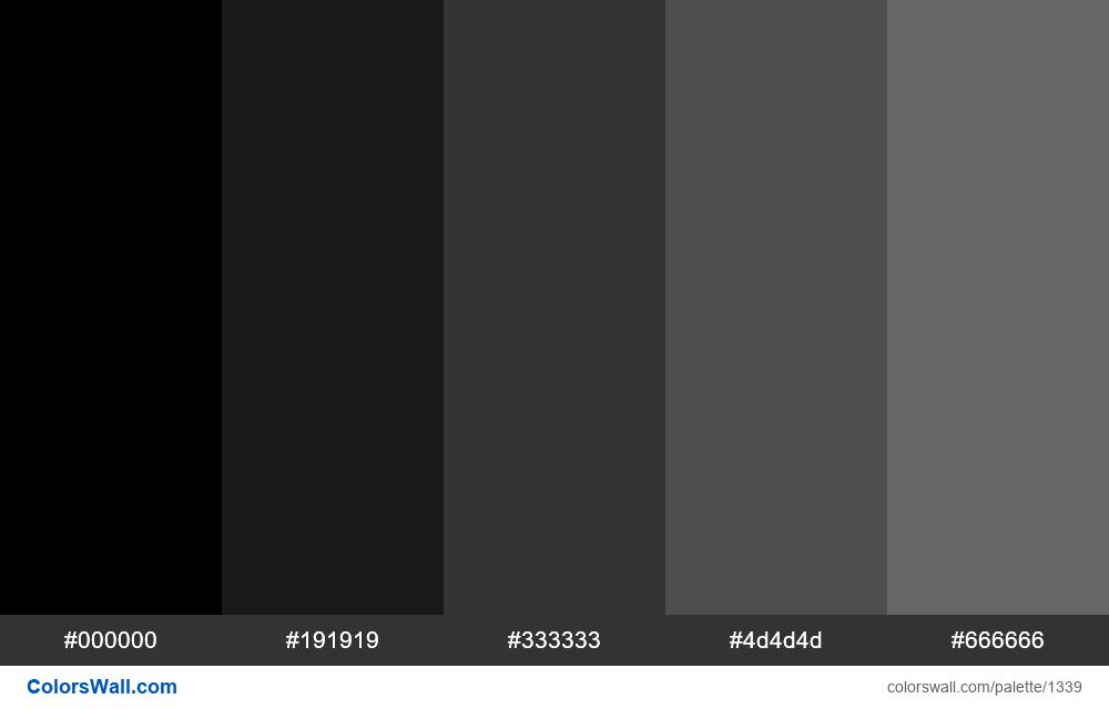 Black tints 5 colours - #1339