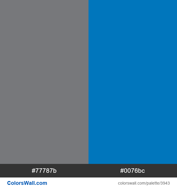 Charter Spectrum brand colors - #3943