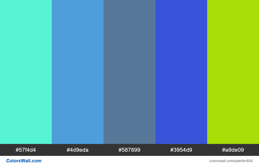 #colorswall random #172 colors palette - #606