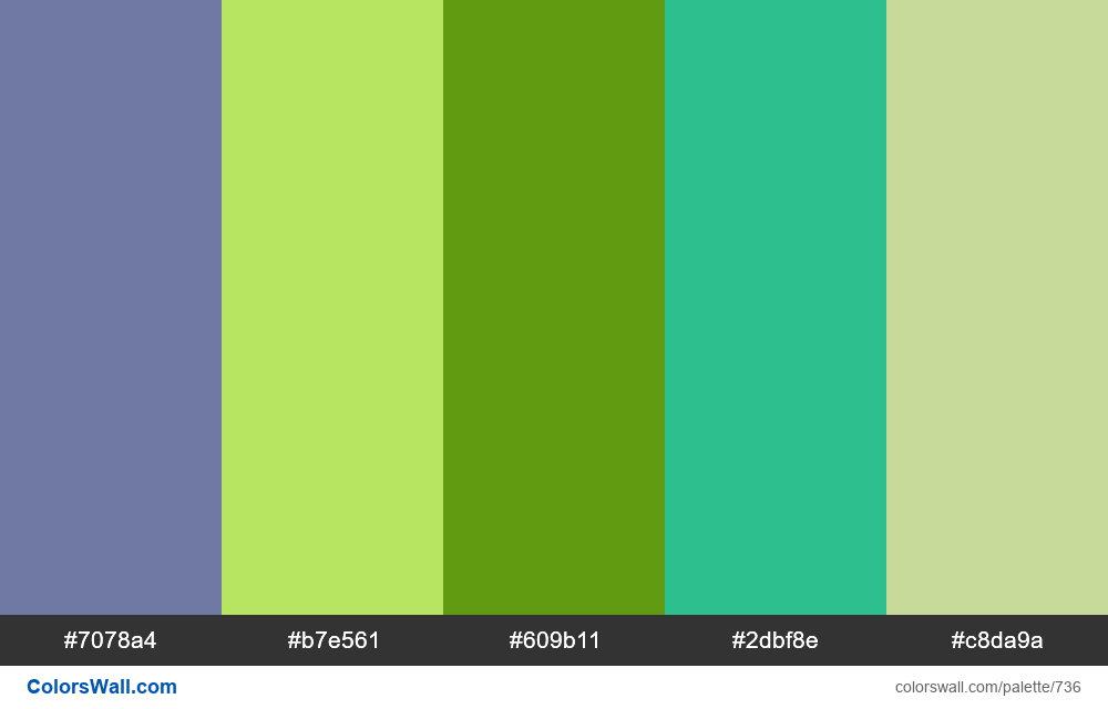 #colorswall random #269 colors palette - #736