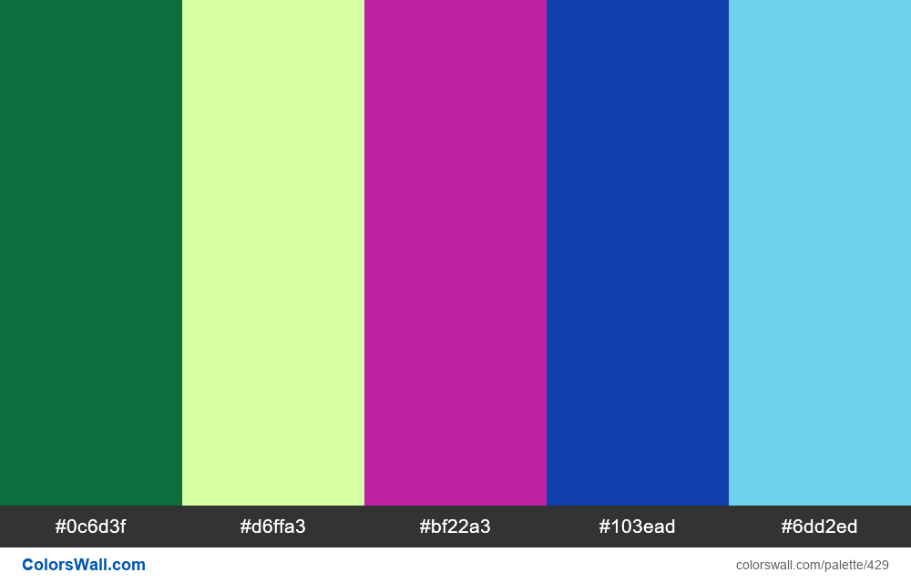 #colorswall random #38 colors palette - #429