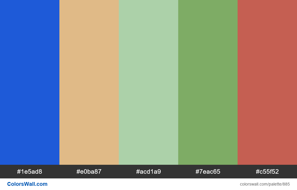 #colorswall random #411 colors palette - #885