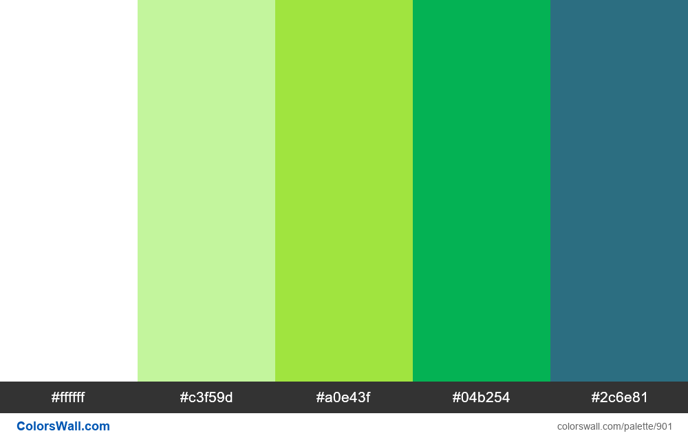 #colorswall random #417 colors palette - #901