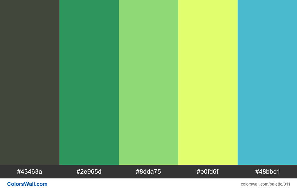 #colorswall random #427 colors palette - #911