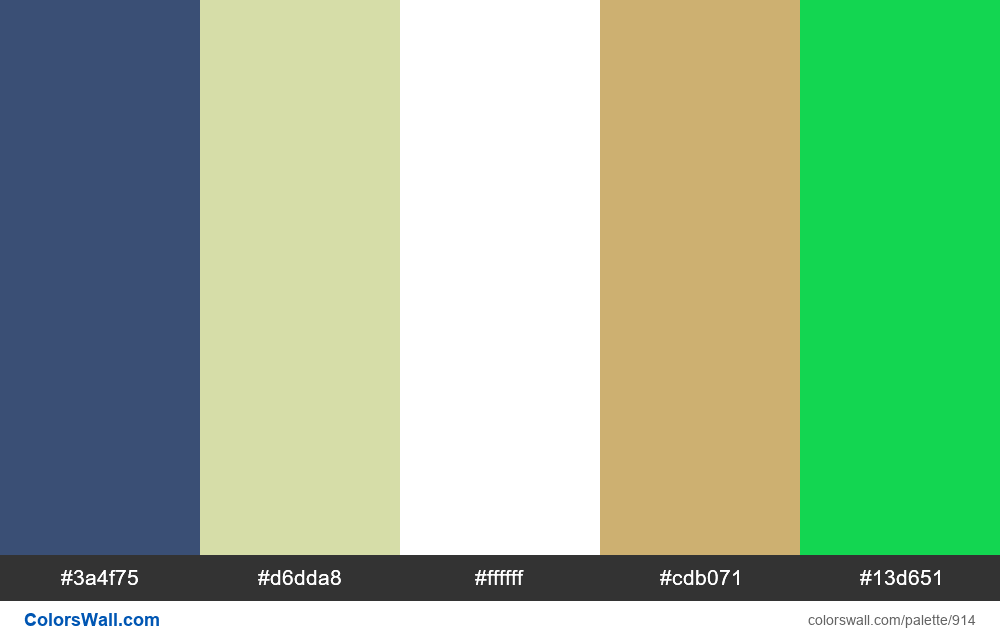 #colorswall random #430 colors palette - #914