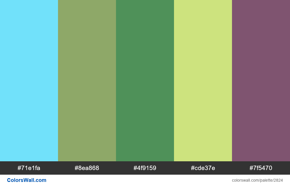 Daily colors palette #67 - #2824