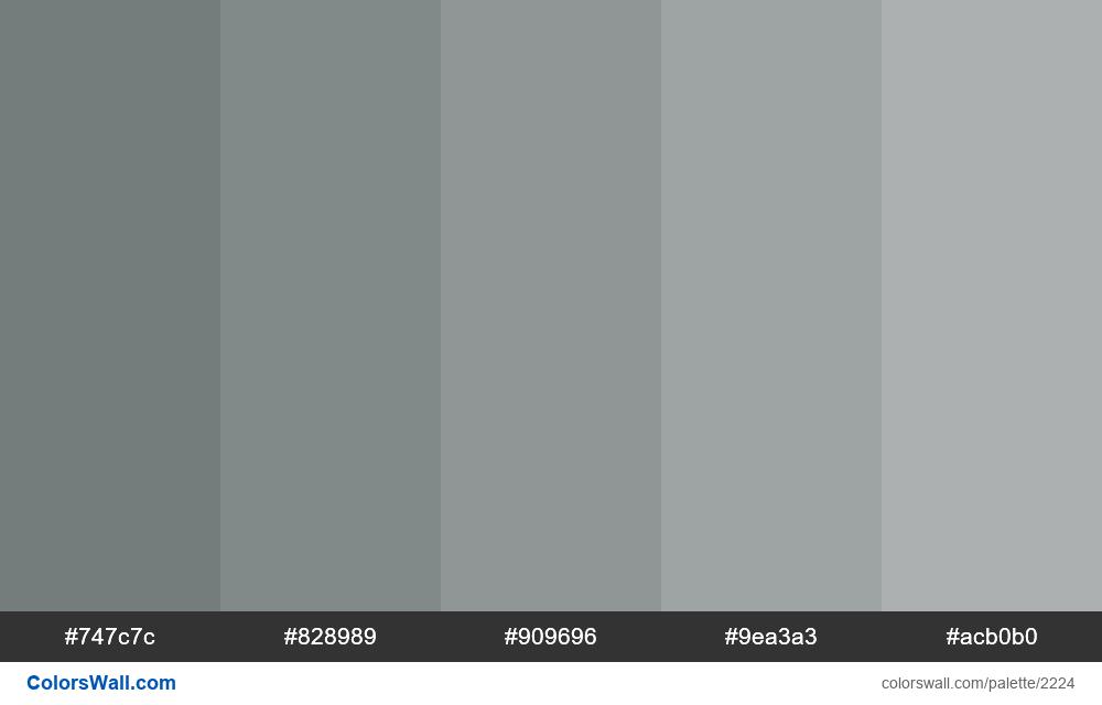Gray monochrome palette - #2224