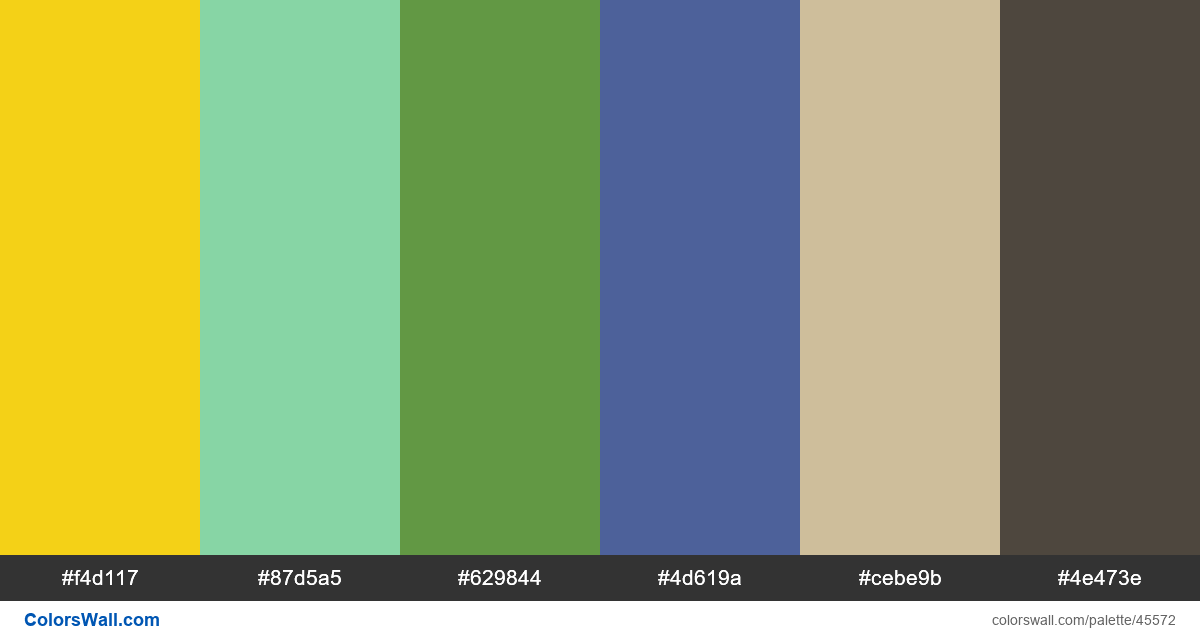 Library player music application hex colors - #45572