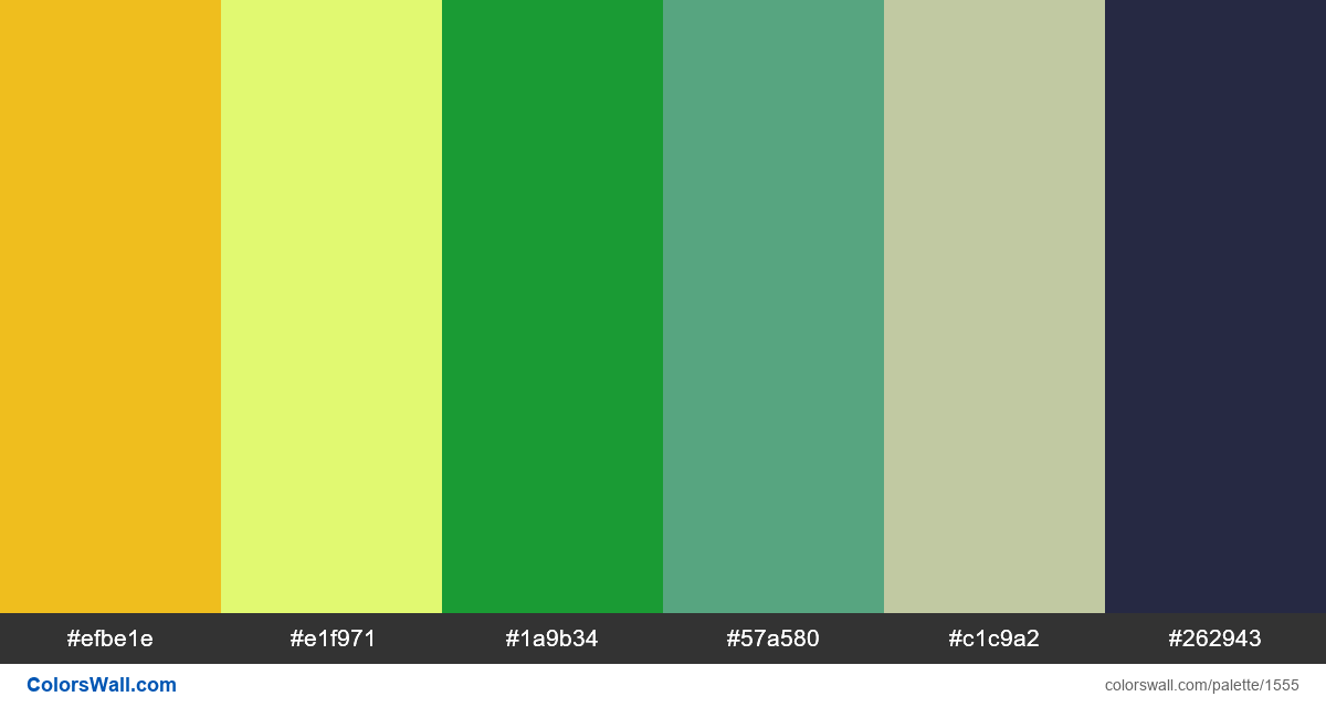 Modern website colors palette - #1555