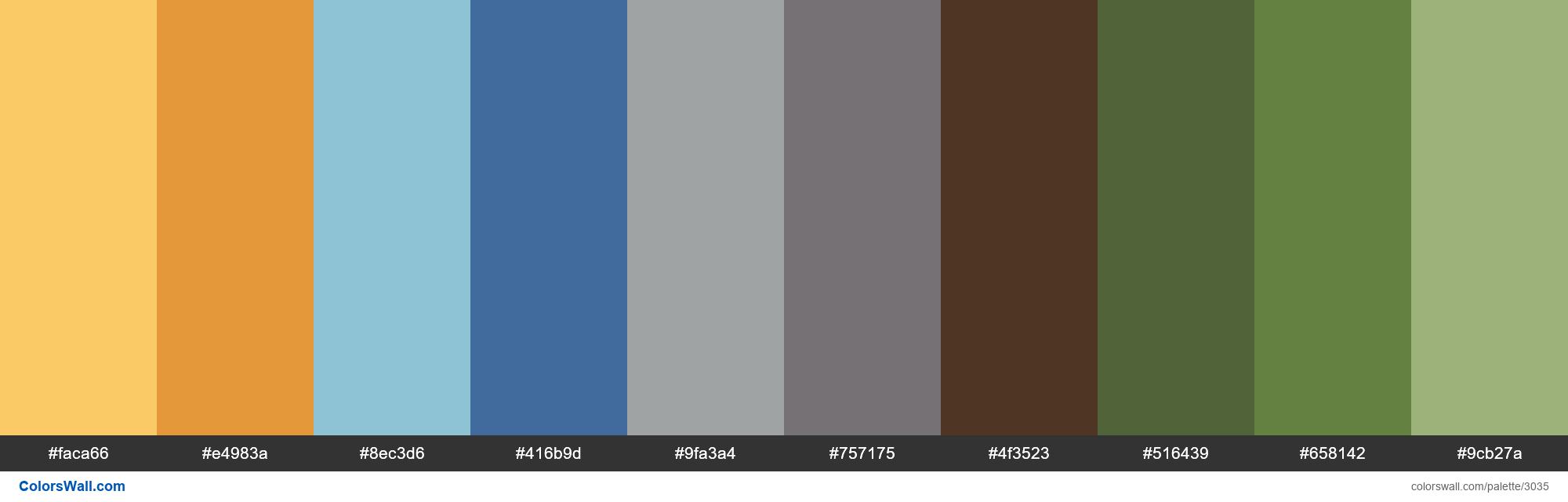 PEPFAR palette - #3035