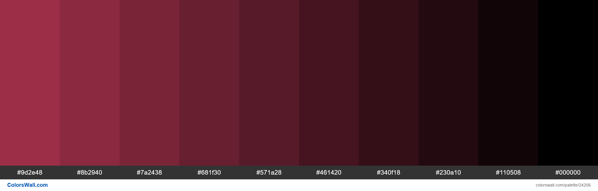 Shades of #ae3350 hex color - #24206