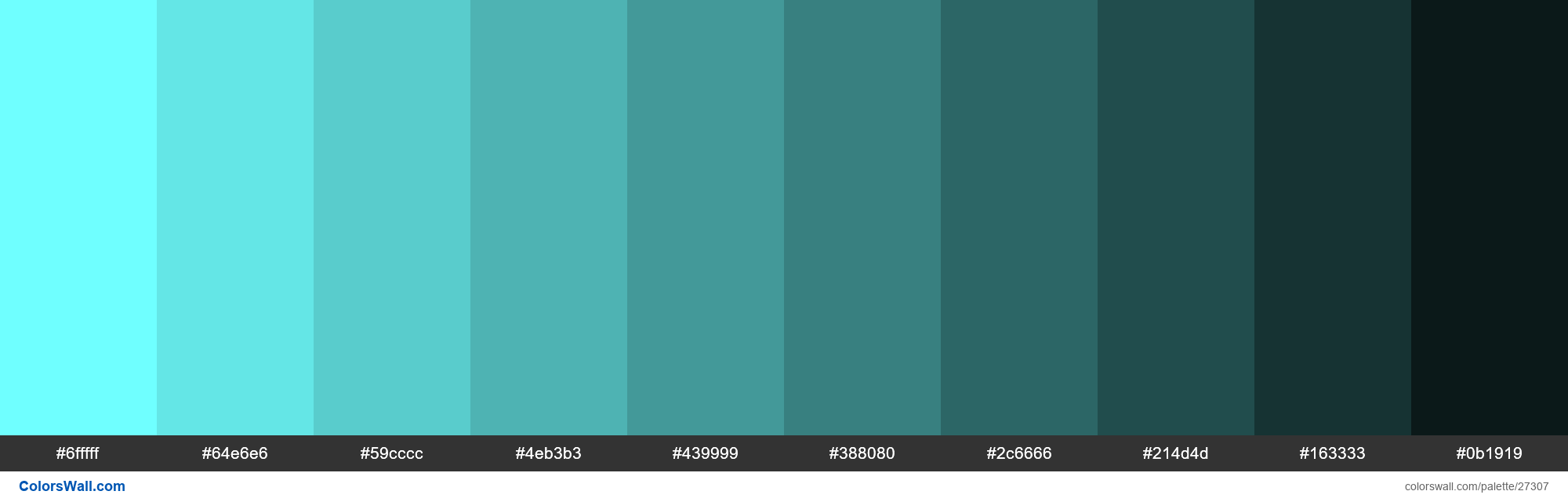 Shades of Baby Blue color #6FFFFF hex - #27307