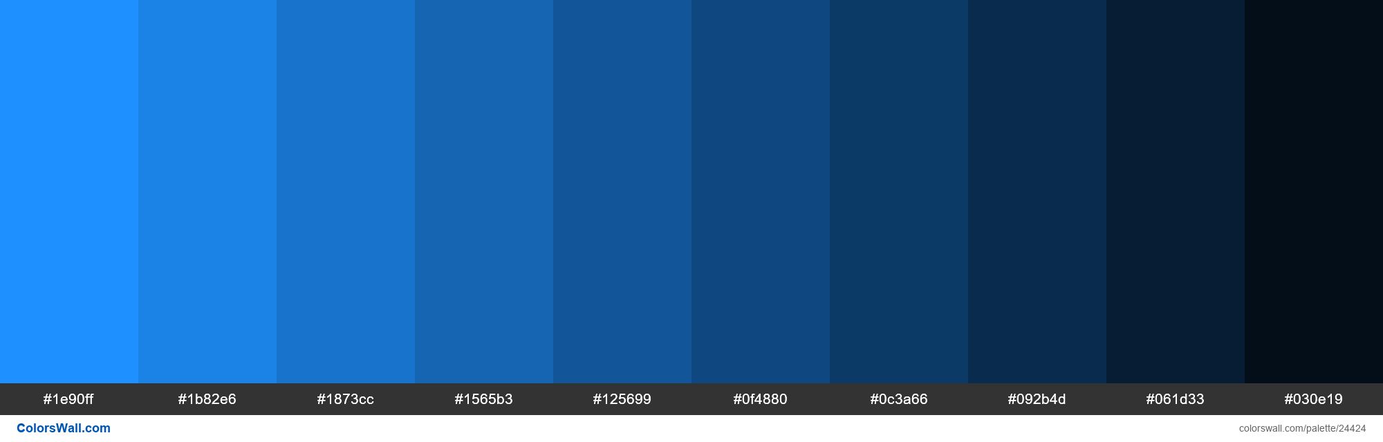 Shades of Dodger Blue #1E90FF hex color - #24424