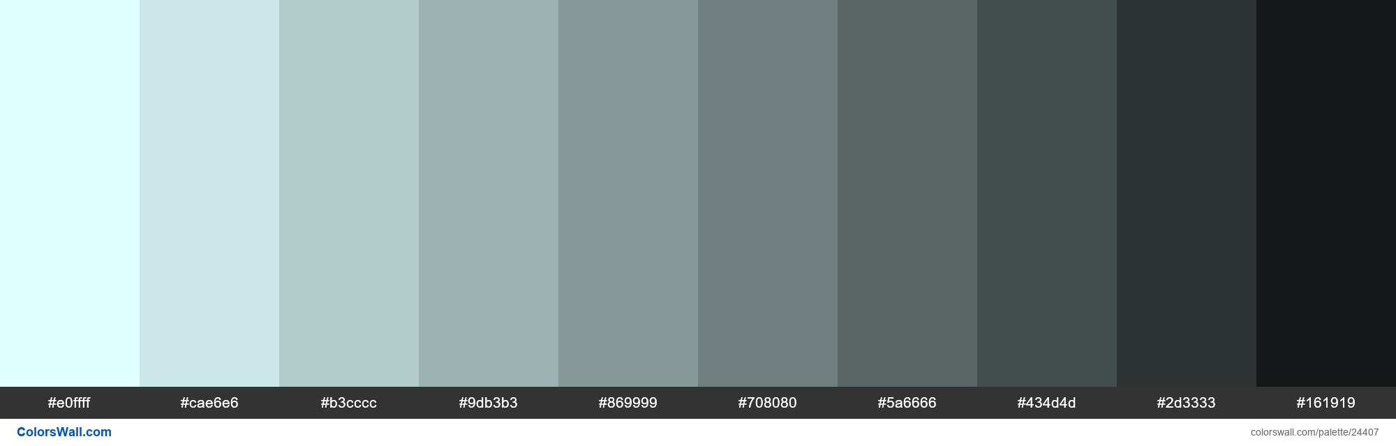 Shades of Light Cyan #E0FFFF hex color - #24407