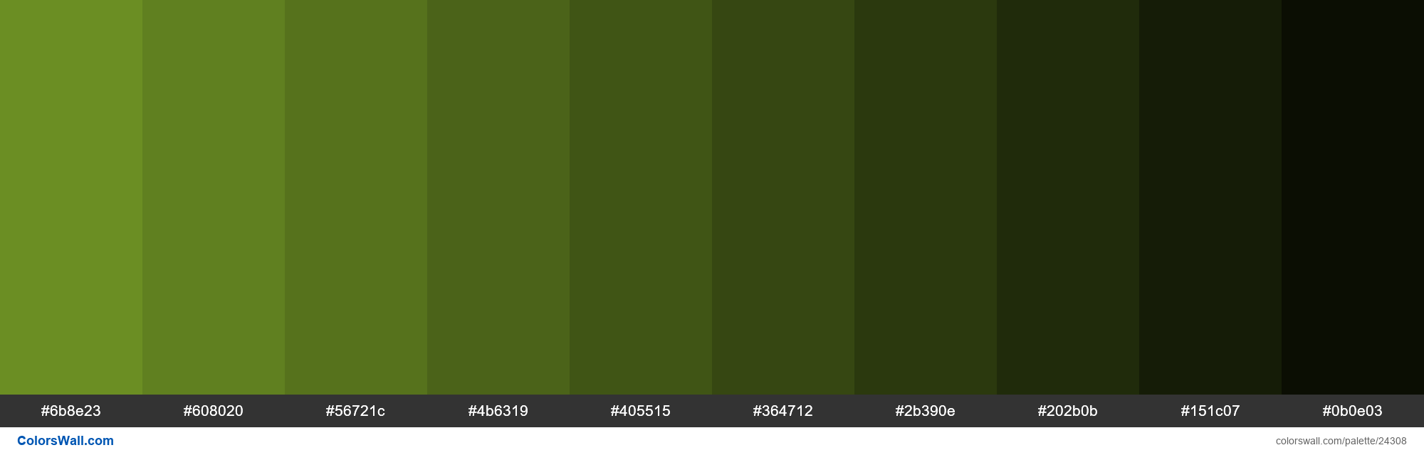 Shades of Olive Drab #6B8E23 hex color - #24308