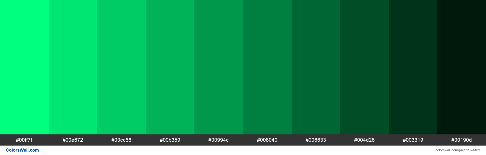 Shades of Spring Green #00FF7F hex color - #24403