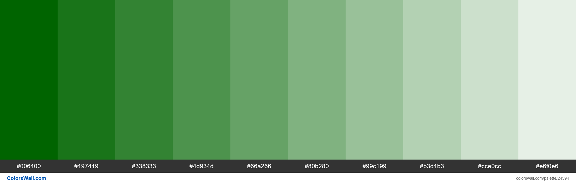 Tints of Dark Green #006400 hex color - #24594