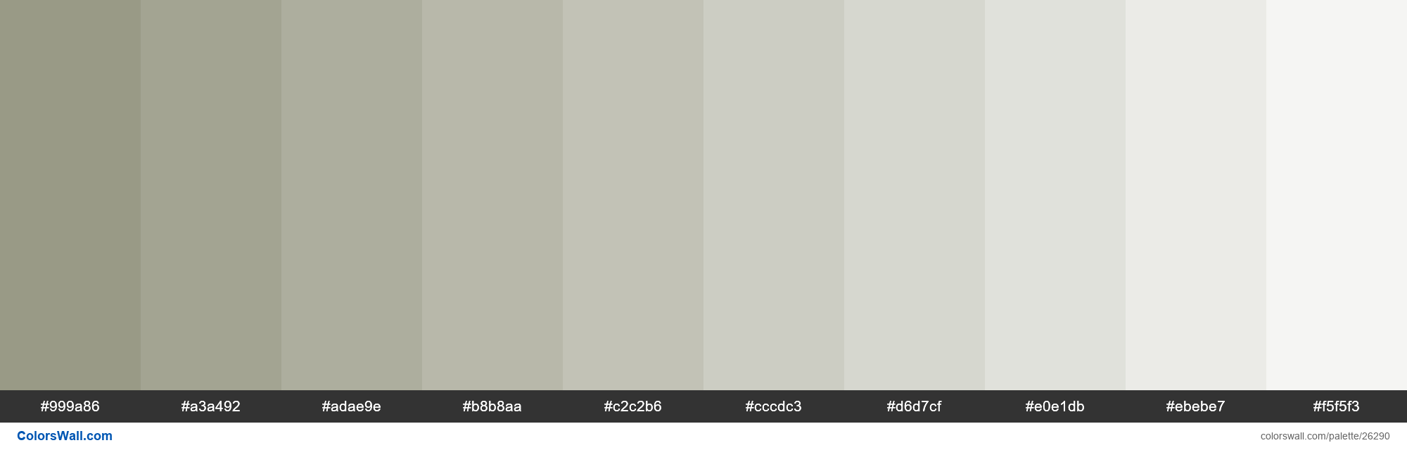 Tints of Lemon Grass color #999A86 hex - #26290