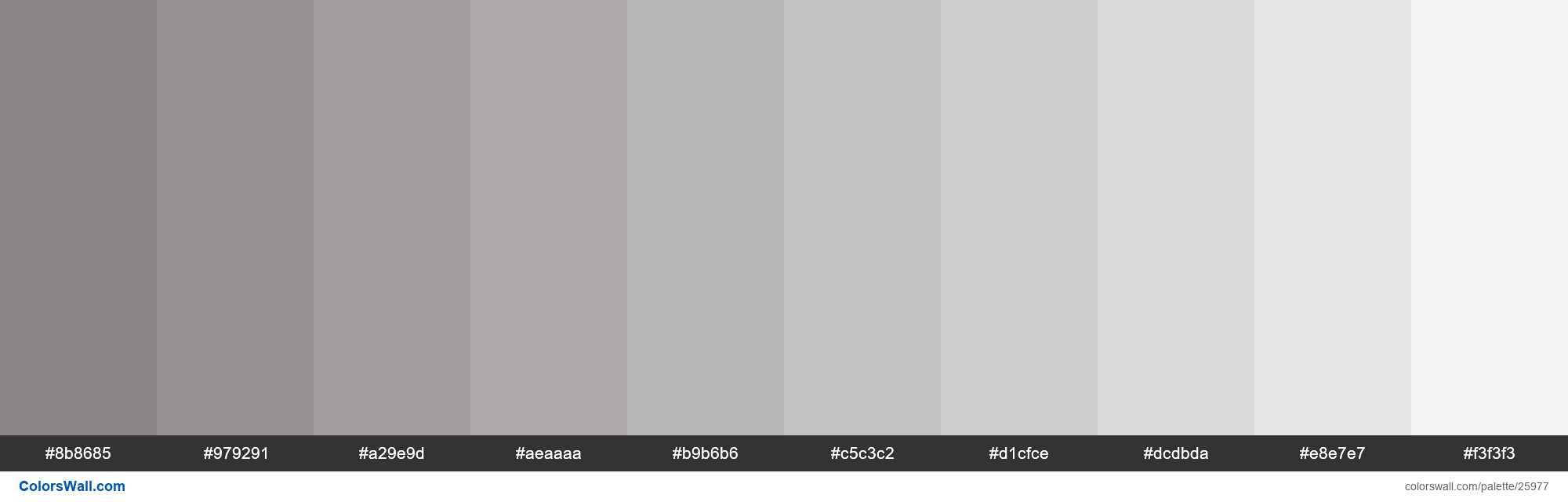 Tints of Suva Grey color #8B8685 hex - #25977
