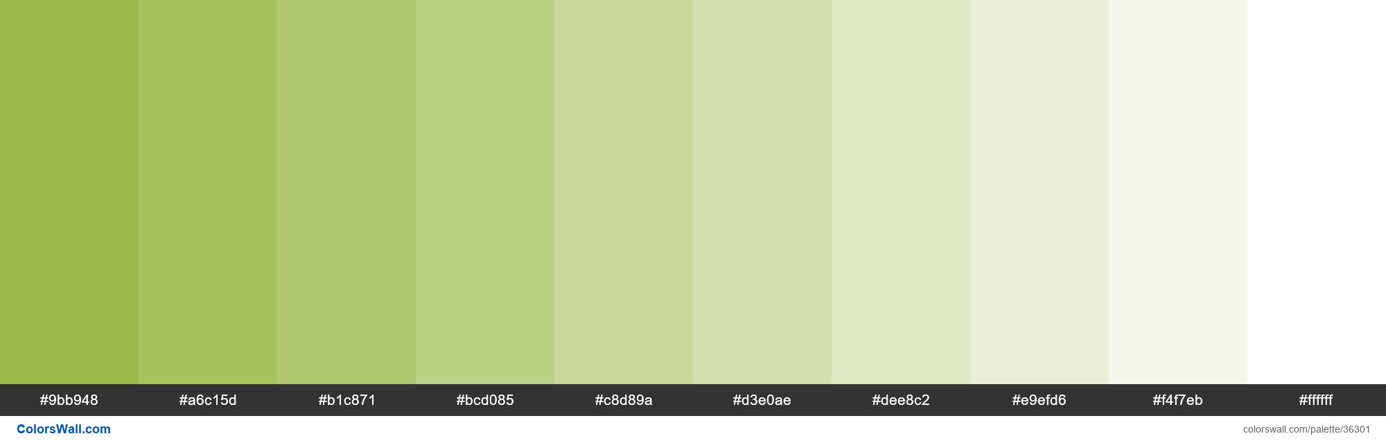 Tints XKCD Color avocado #90b134 hex - #36301