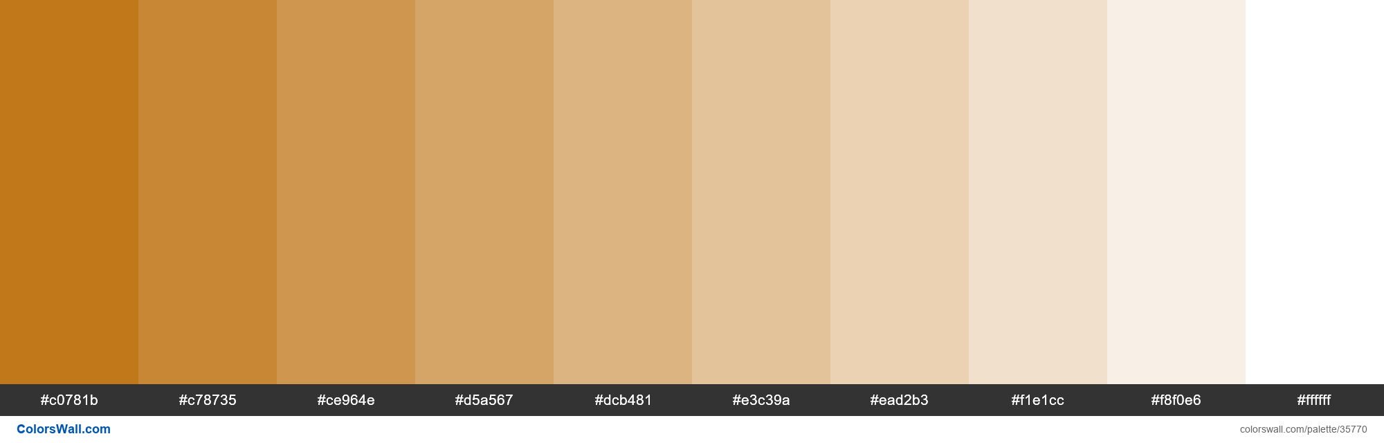 Tints XKCD Color brown orange #b96902 hex - #35770