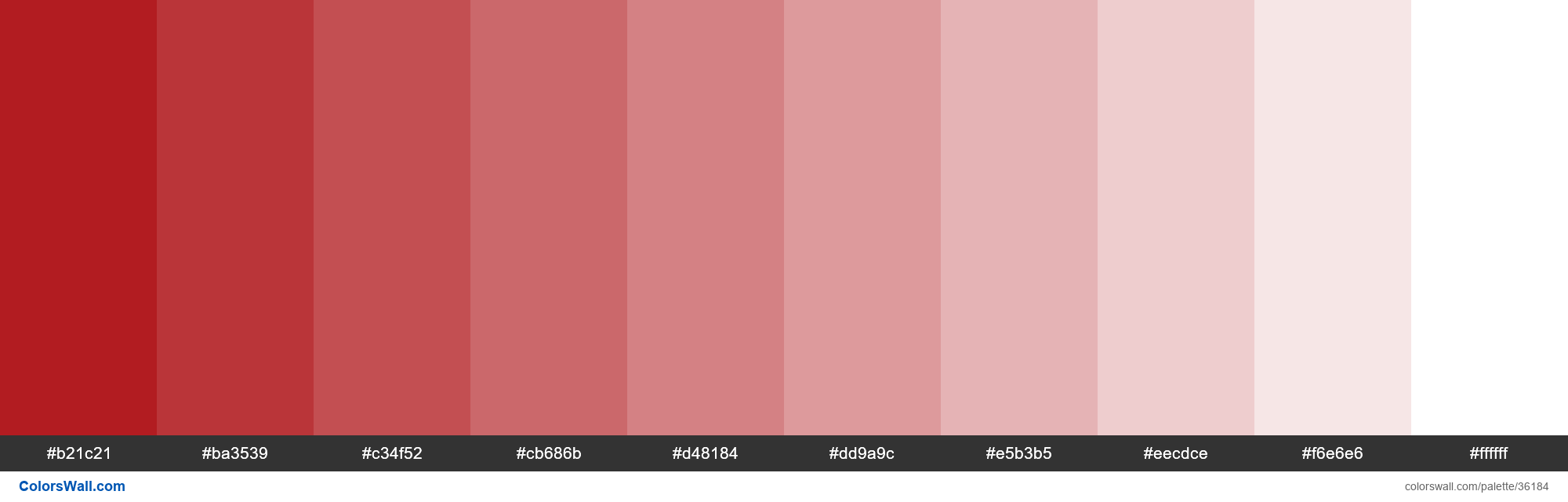 Tints XKCD Color darkish red #a90308 hex - #36184