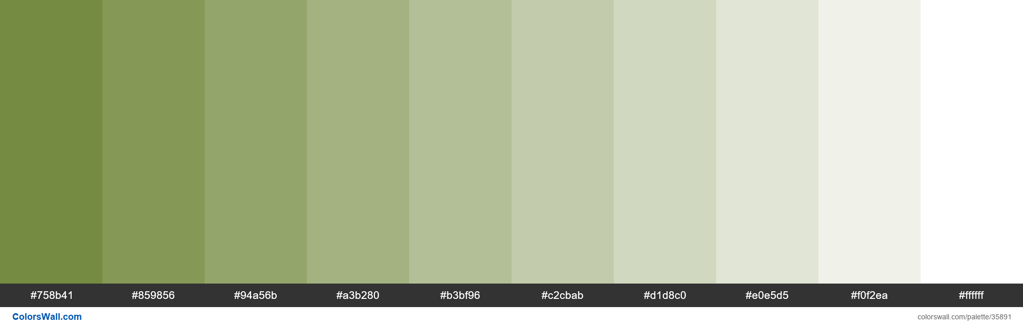 Tints XKCD Color dirty green #667e2c hex - #35891