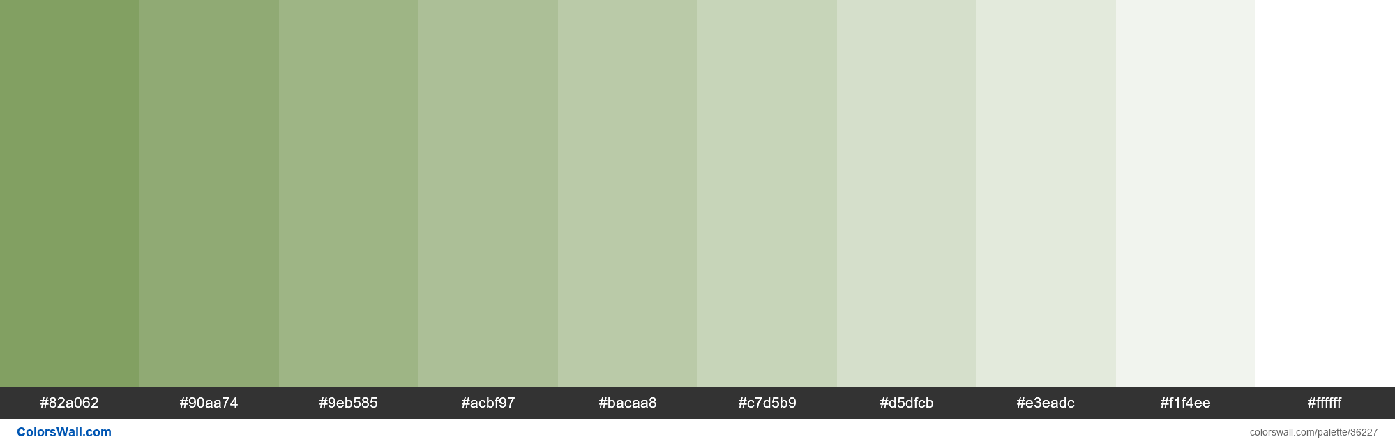 Tints XKCD Color drab green #749551 hex - #36227