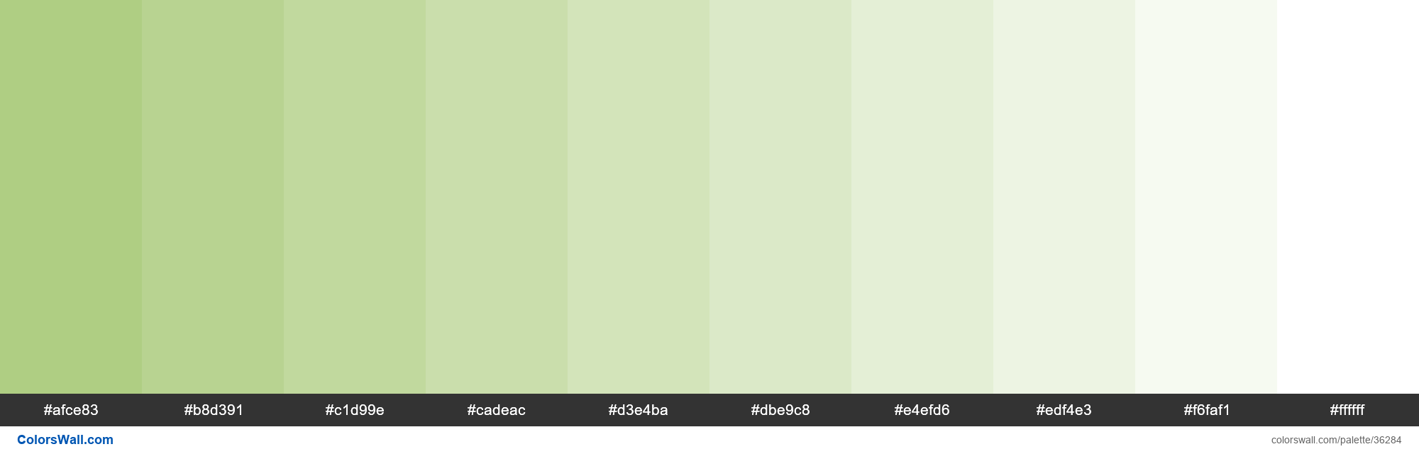 Tints XKCD Color light moss green #a6c875 hex - #36284