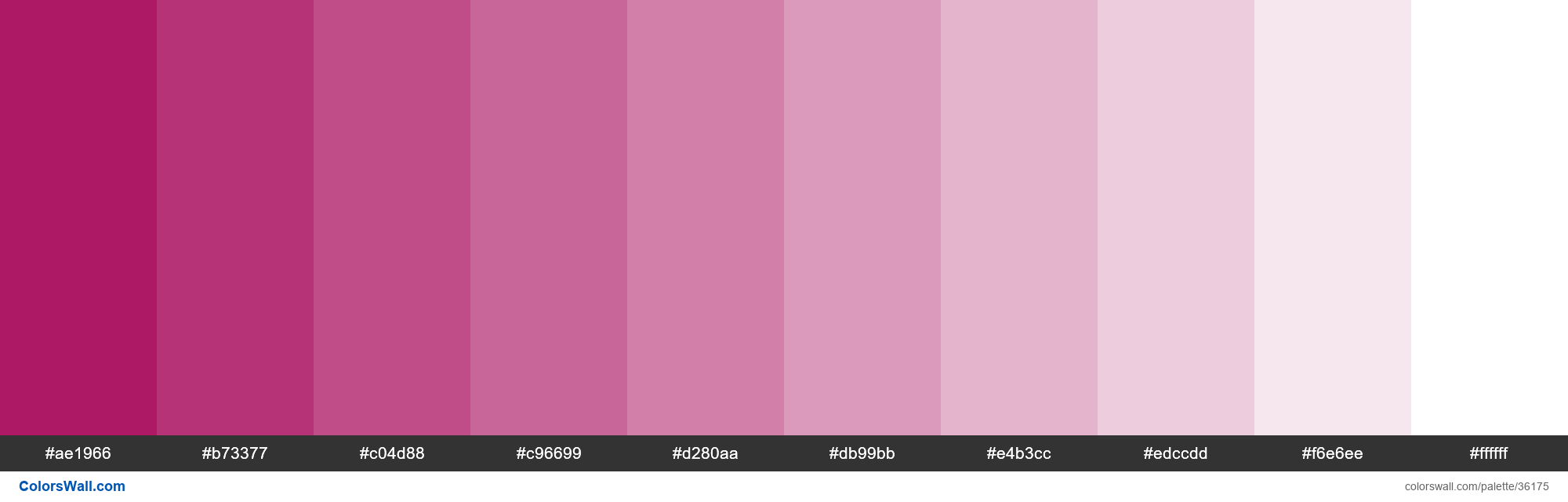 Tints XKCD Color violet red #a50055 hex - #36175